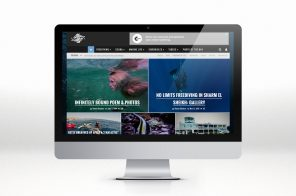 SEAUNSEEN WEBSITE DESIGN
